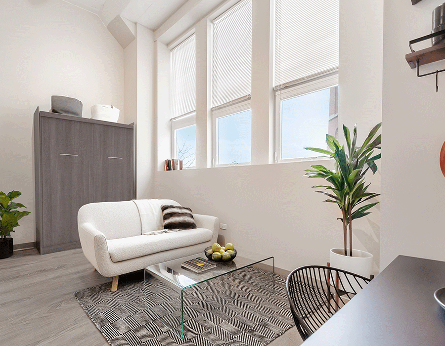Sunny south loop apartment with plank flooring and tall windows